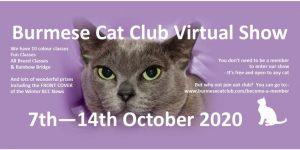Burmese Cat Club Virtual Show 2020